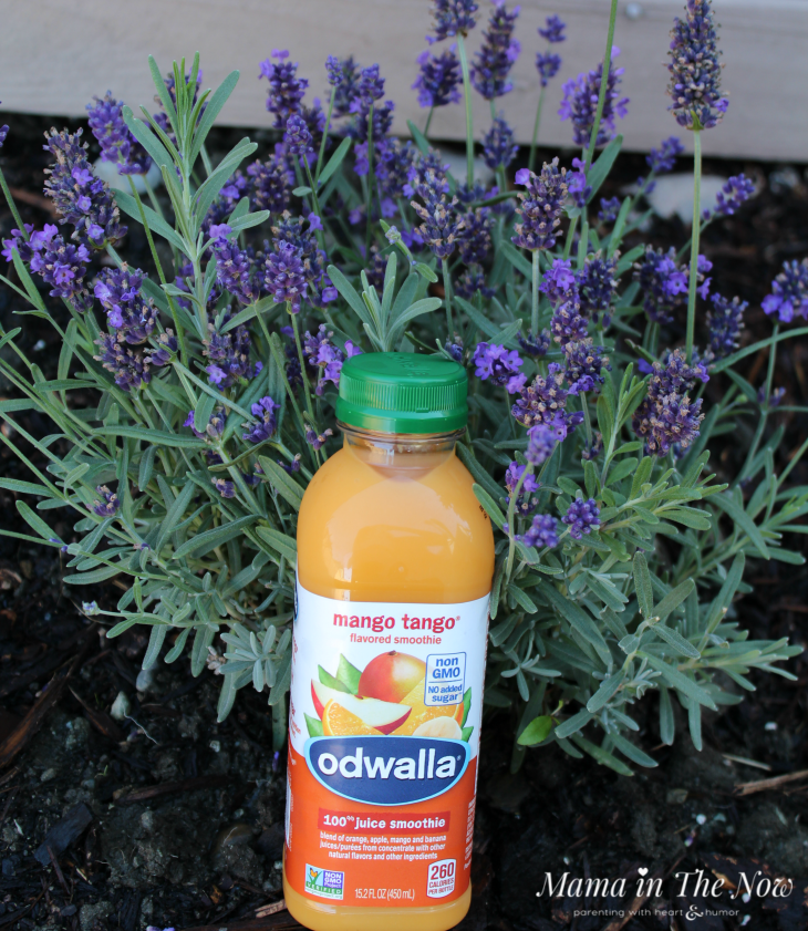 Ways to feed your soul when you feel depleted. Reasons to garden, do yoga and exercise! Worn out from parenting and your motherhood duties? 7 things the fills your soul without breaking the bank. #hygge #Feedyoursoul #Odwalla #mamainthenow #Motherhood #TiredMom #Lavender #Getoutside #MyOdwalla #ad