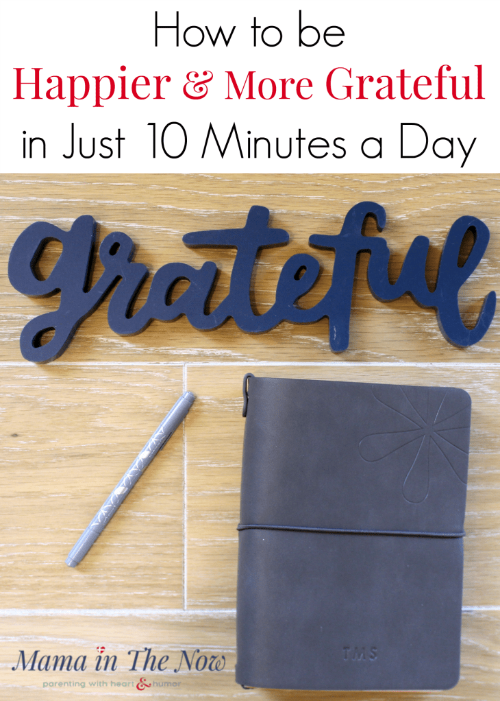 How to be happier and more grateful in just 10 minutes a day. Mindfulness and gratitude journaling made easy for busy moms. Goal setting and planning for work at home moms. Weight loss and exercise tracking made easy. Erin Condren review, On the Go Folio and Petite Planners. #ErinCondren #ErinCondrenReview #DayPlanner #GratitudeJournal #WeightLoss #ExerciseTracker #GoalSetting #WorkAtHomeMom #MamaintheNow #Howtobehappier #GratitudeJournal #Motherhood #HappierMotherhood #Ad