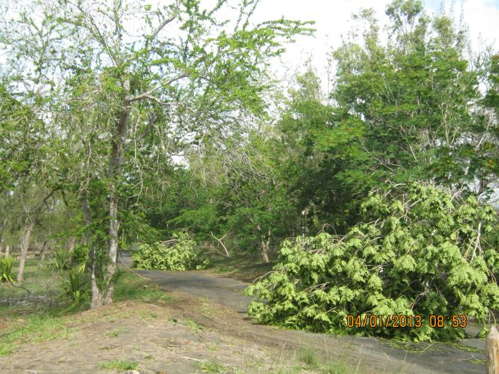 Cyclone Dumile 032