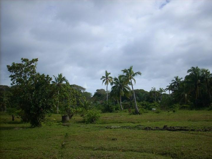 Madagascar 062
