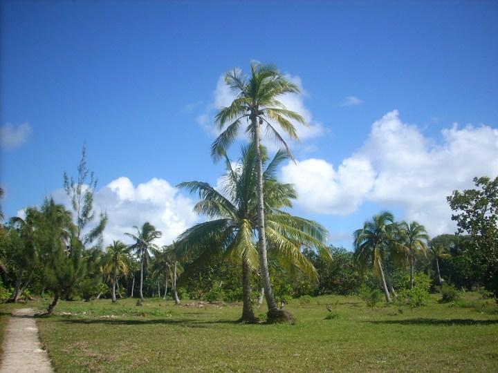 Madagascar 163