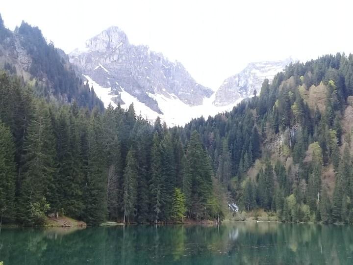 14mai-Abondance - Lac des Plagnes (1)