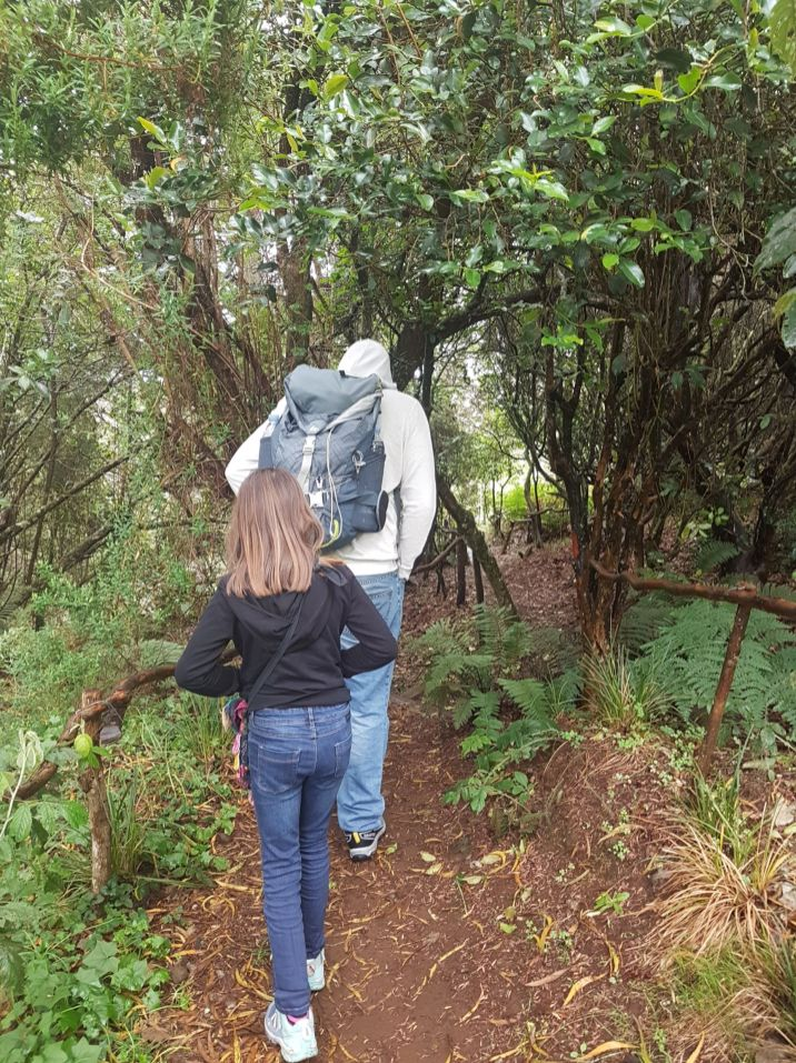 Forêt Avril