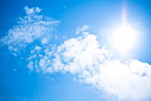直射日光の当たらない涼しい場所ってどこ?冷蔵庫にいれるのOK&NG食材