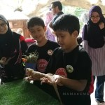 Pengalaman Menarik di Farm In The City