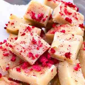 Raspberry Vanilla Fudge Bites | mamaknowsnutrition.com
