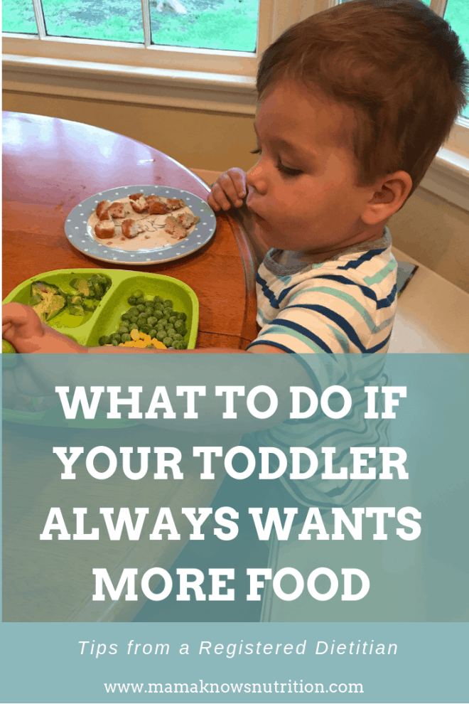 Toddler wants more food all the time | mamaknowsnutrition.com