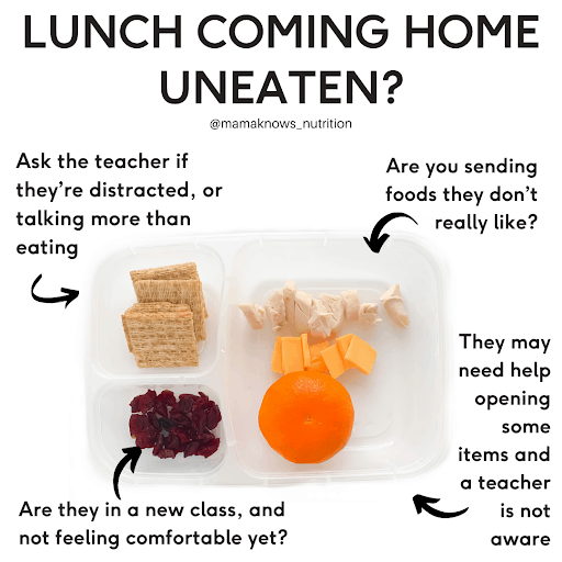 Why some toddlers won't eat lunch