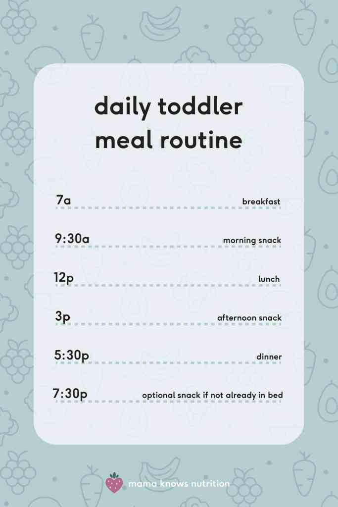 daily toddler meal routine