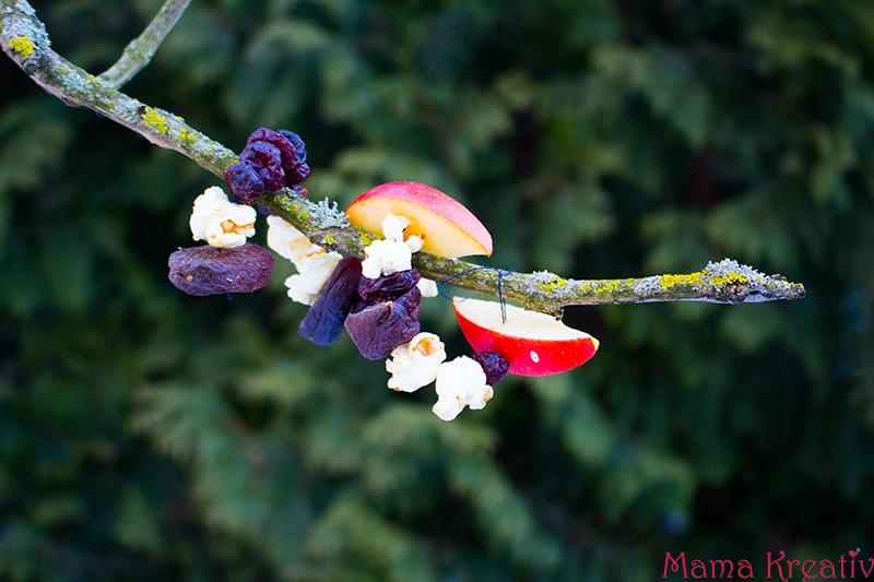 Vogelfutter selber machen erstellen aus Samen und Nüssen (15)