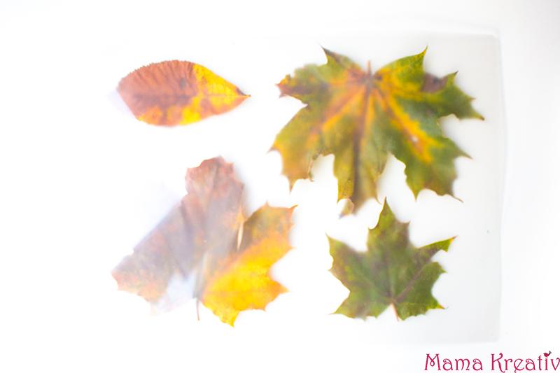 Basteln mit Kindern im Herbst : 8 Ideen mit Naturmaterialien — Mama ...