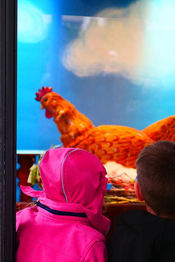 Ein Tag im Märchen - Blühendes Barock Ludwigsburg und Kürbisausstellung