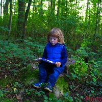 Naturbingo: Suchspiel im Wald