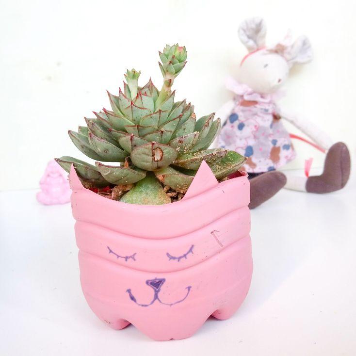 Gatito amante de las plantas.