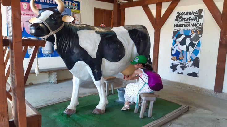 Anita ordeñando la vaca.