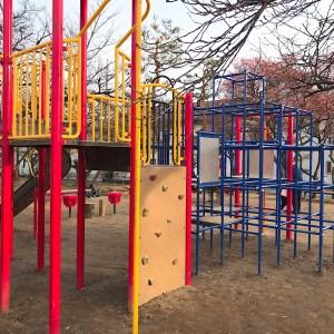 長野運動公園遊具