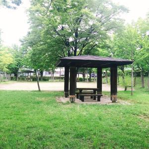 和田公園ベンチ3