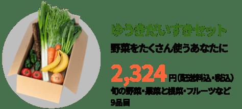 ビオマルシェ 野菜 セット