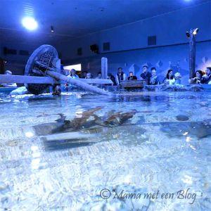 sealife mamameteenblog4