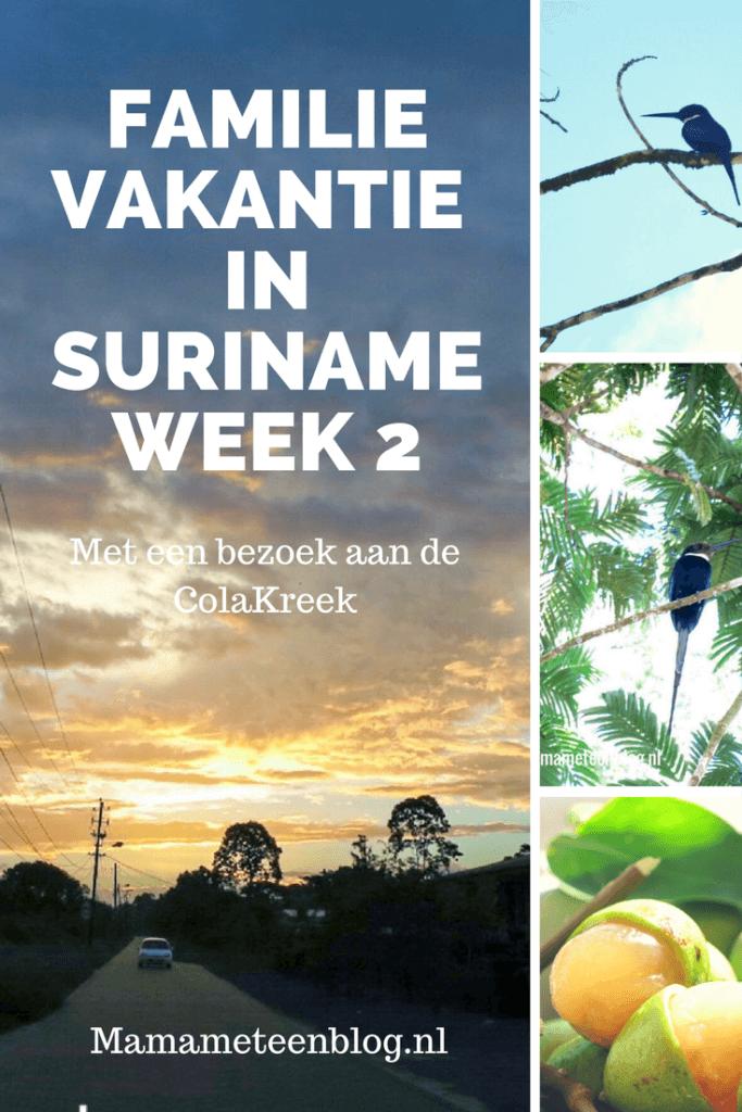 familievakantie suriname week 2 mamameteenblog.nl
