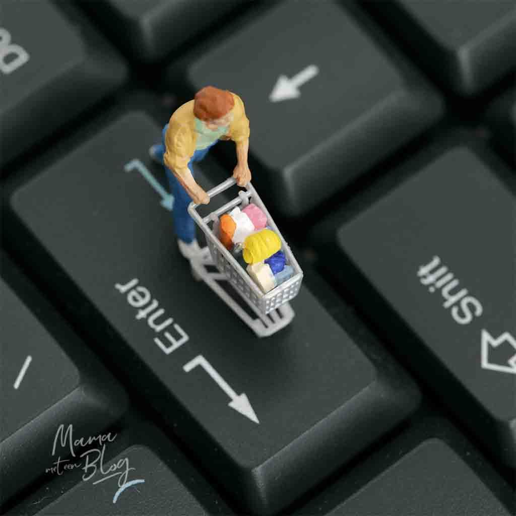 online boodschappen doen voordelig mamameteenblog
