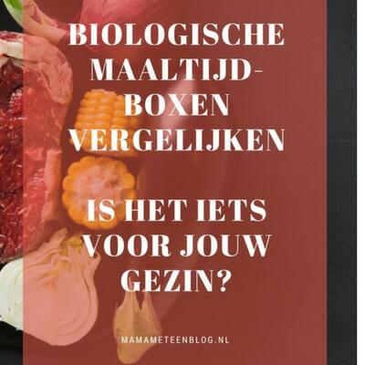 biologische maaltijdboxen mamameteenblog.nl