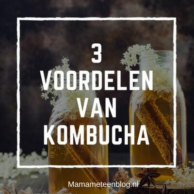 3 voordelen van Kombucha mamameteenblog.nl