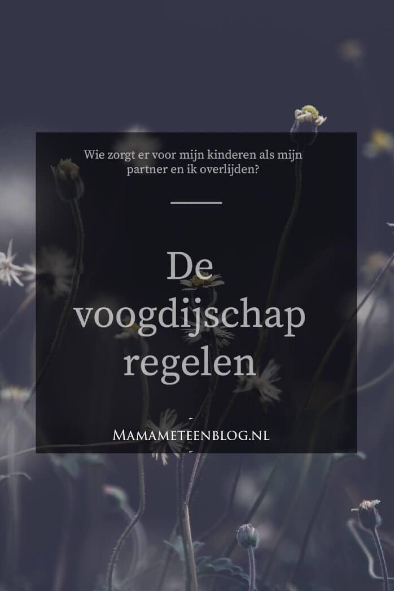 De voogdijschap regelen bij overlijden mamameteenblog.nl