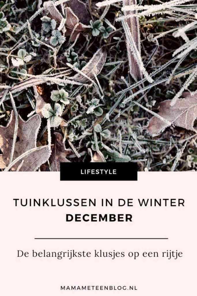 Tuinklussen-in-de-winter-mamameteenblog.nl_