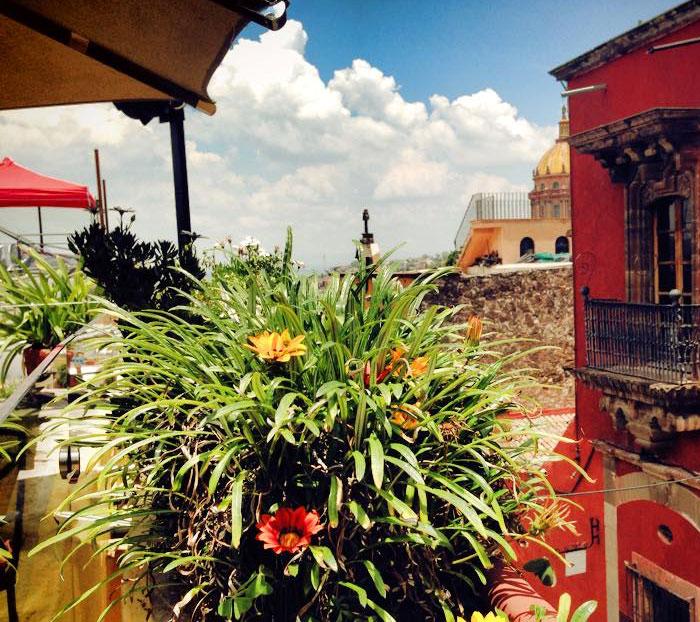 Terraza MAMA MIA San Miguel