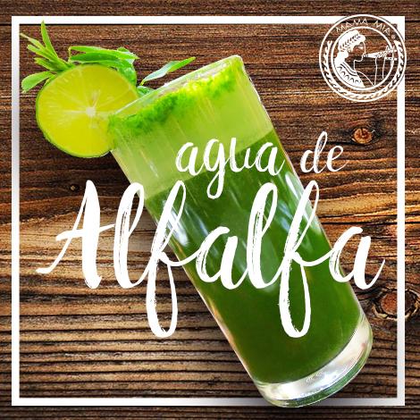 Alfalfa San Miguel de Allende