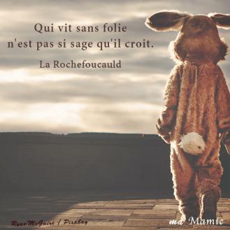Qui vit sans folie n'est pas si sage qu'il croit - La Rochefoucauld