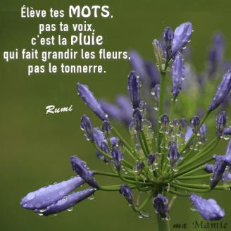Elève tes mots, pas ta voix, c'est la pluie qui fait grandir les fleurs, pas le tonnerre - Rumi