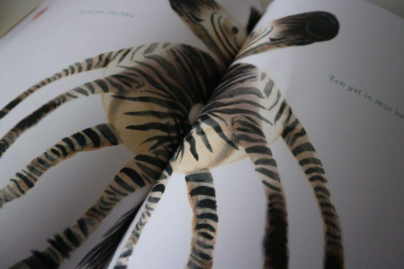 prentenboek raar zebra