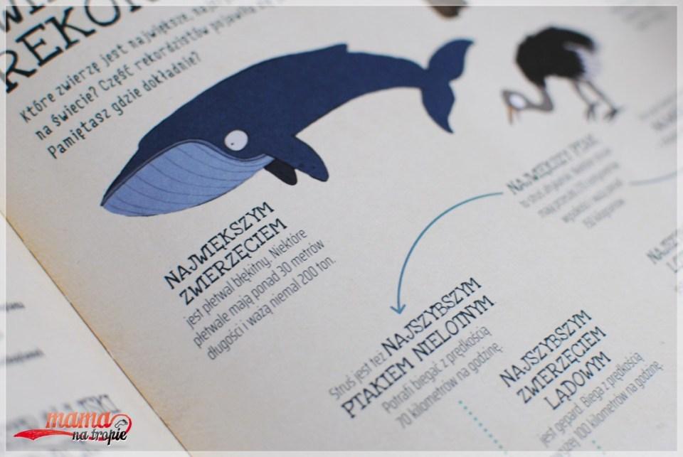 zwierzęta rekordziści, dla dzieci, książka o zwierzętach
