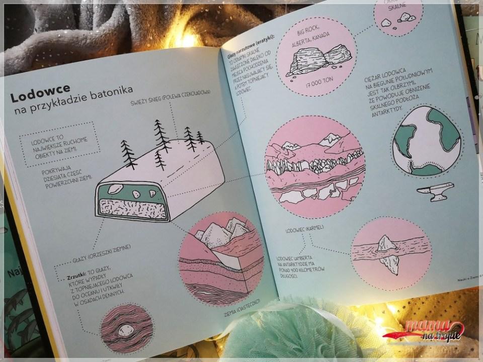 rekiny, książka dla dzieci, nasza ksiegarnia
