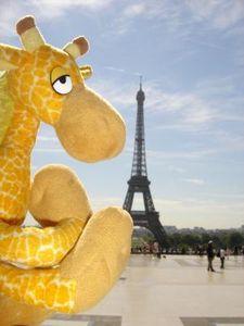 girafe-tour-eiffel