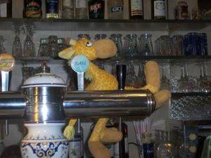 lola-girafe