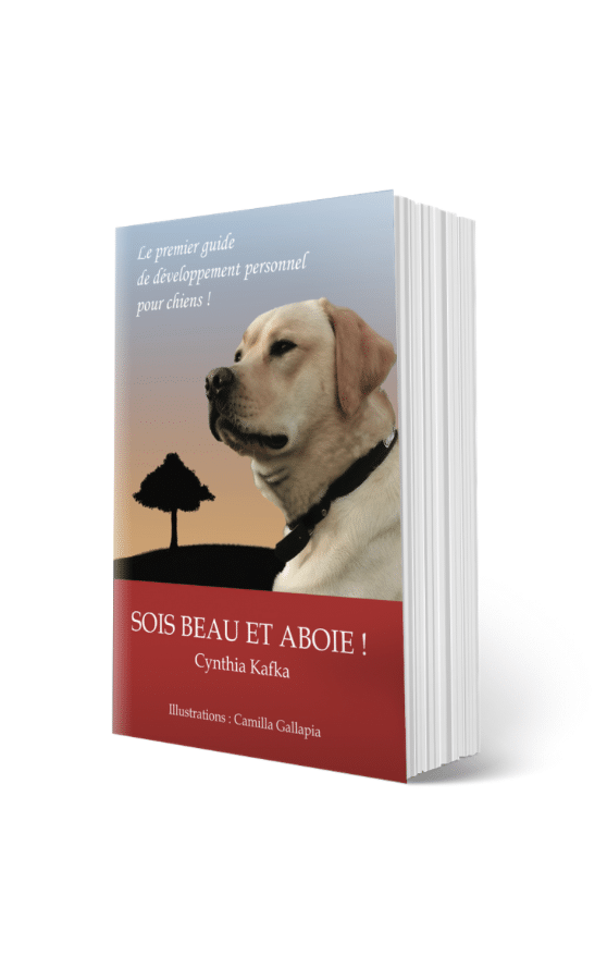 sois beau et aboie guide du chien