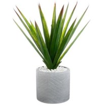 plante artificelle