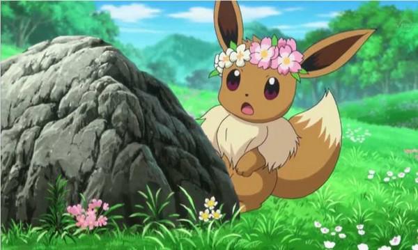 evoli et fleurs  Maman Chou