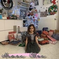 nos petits bonheurs de decembre 2018 (8)