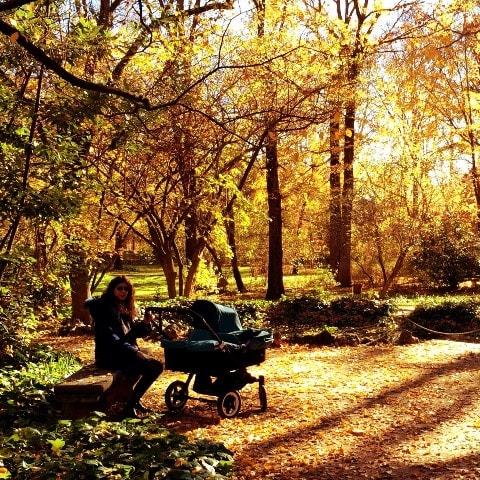 maternidad en otoño