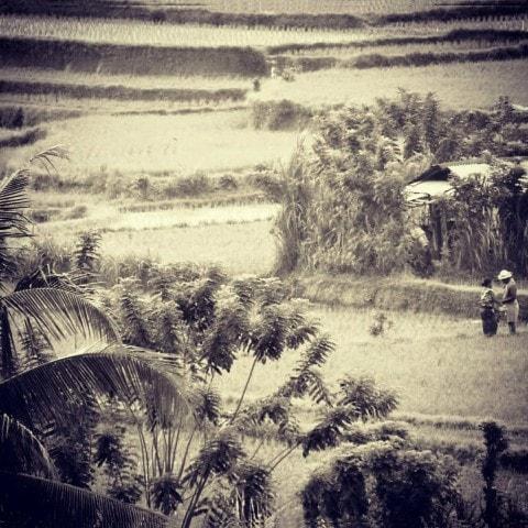 vacaciones en Bali