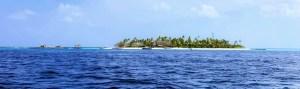 Buceo en maldivas fushifaru