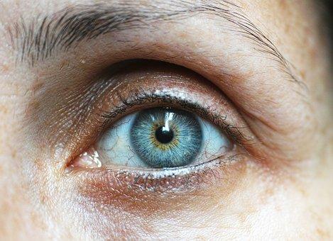 eyebrow-1792296__340.jpg