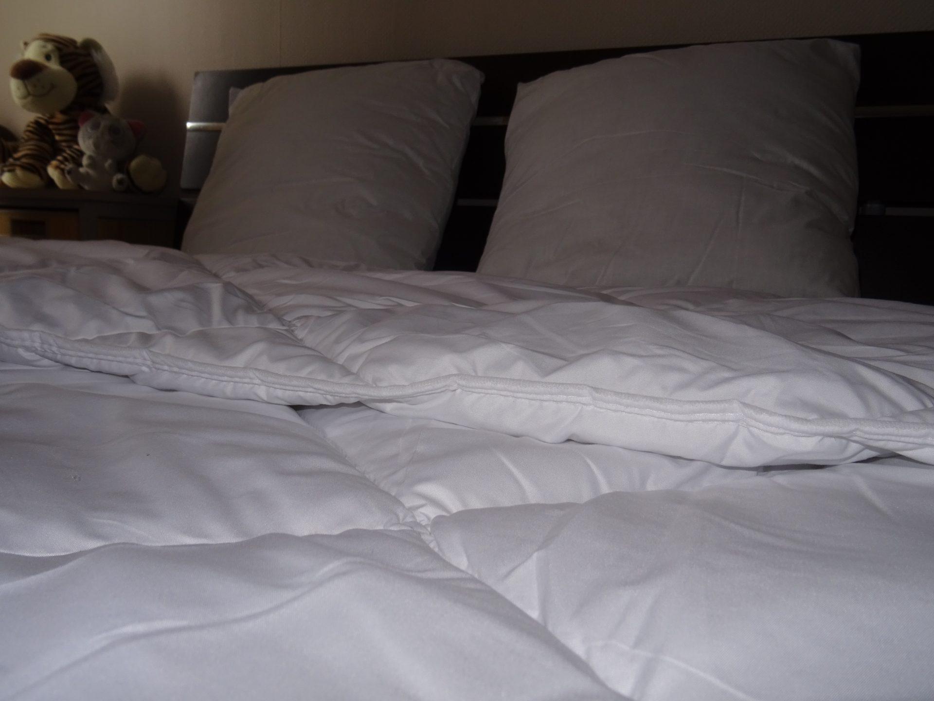 Cet hiver on reste sous la couette et les oreillers Bleu Câlin