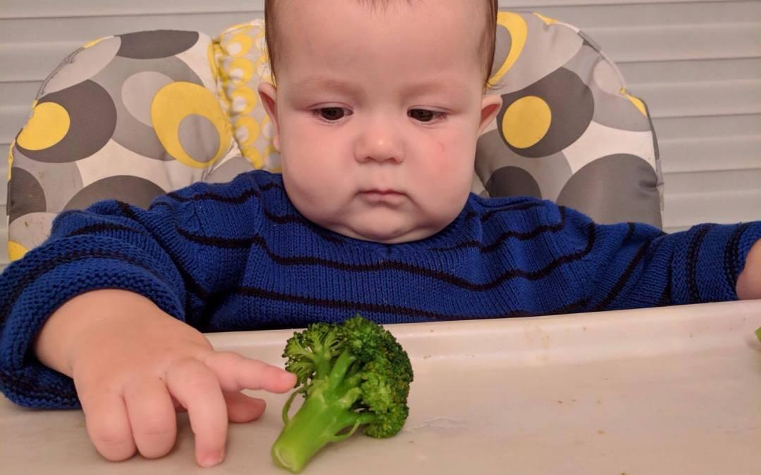 Étude de cas: bébé de 8 mois qui mange peu et ne tolère pas les textures