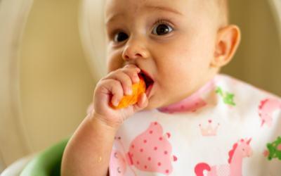 Menu DME pour bébé de 6 mois et plus