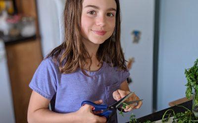 On délègue les lunchs: Recette de trempette